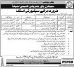 NAWE WAQT JOBS Central Power Generation Company Kashmor Jobs